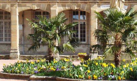 Création de jardin Autun