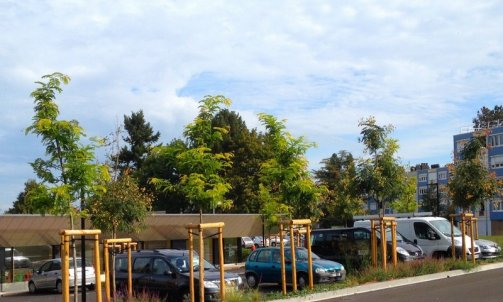 Plantation Le Creusot