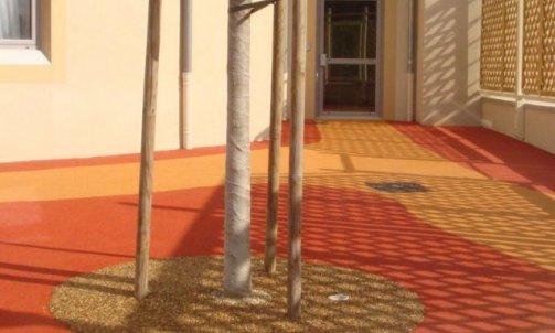 Soin des arbres Givry